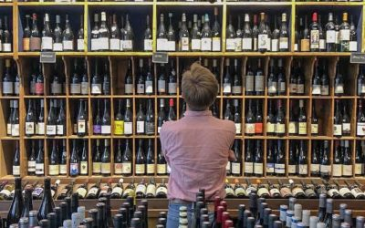 Discover the wine making region of France