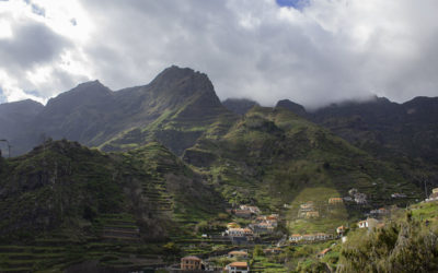 Les Vins de Madère, la renommé mondiale d'une île paradisiaque